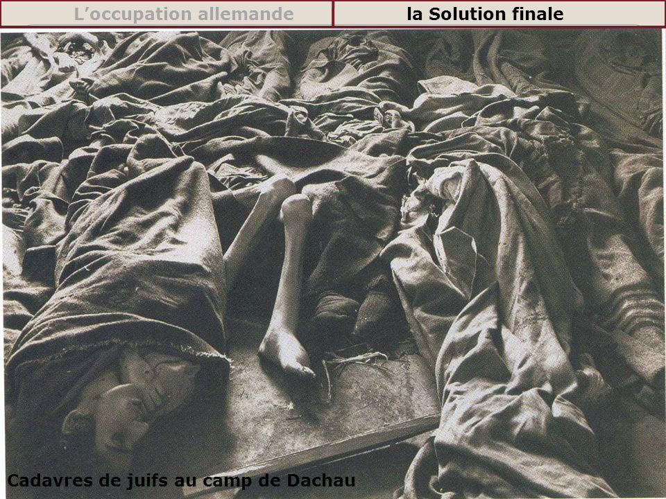 Cadavres de juifs au camp de Dachau Loccupation allemandela Solution finale