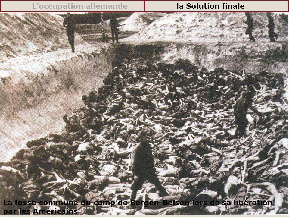 La fosse commune du camp de Bergen-Belsen lors de sa libération par les Américains Loccupation allemandela Solution finale