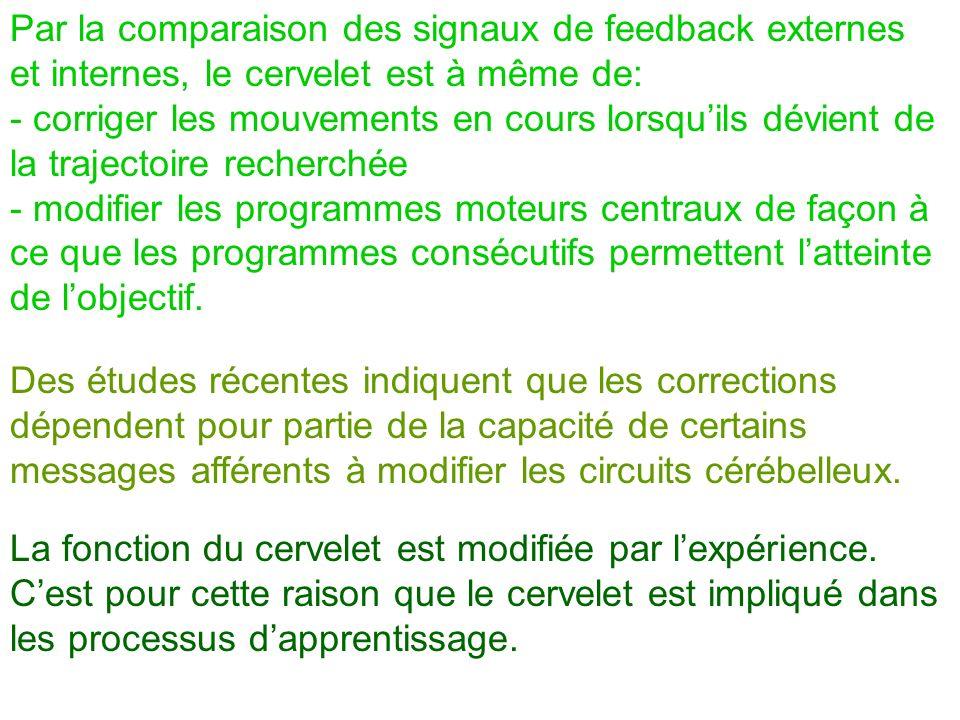 Par la comparaison des signaux de feedback externes et internes, le cervelet est à même de: - corriger les mouvements en cours lorsquils dévient de la