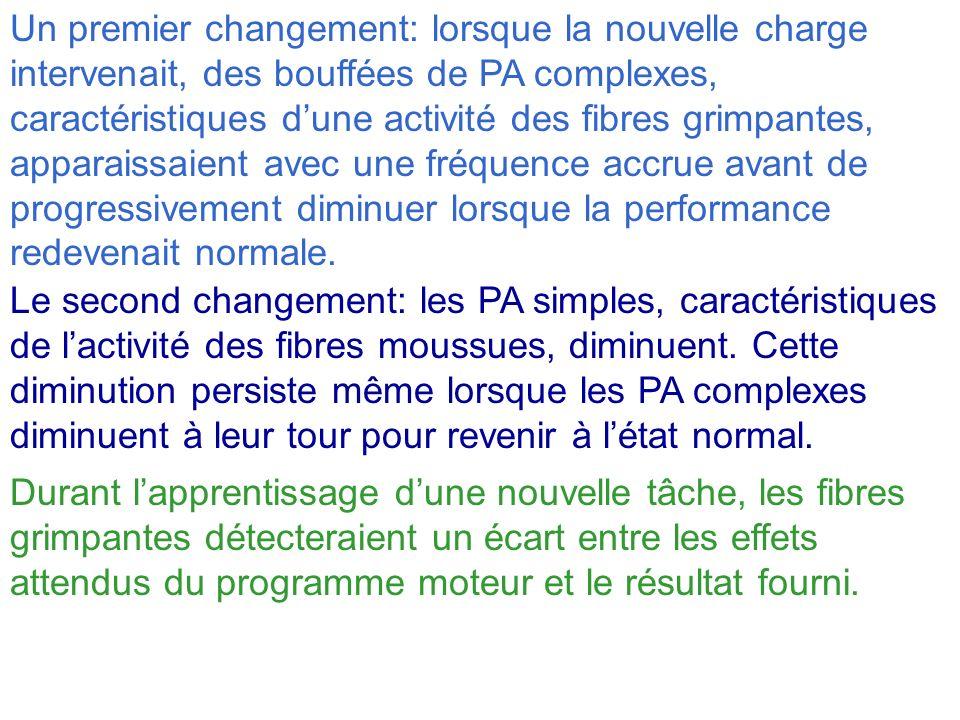 Un premier changement: lorsque la nouvelle charge intervenait, des bouffées de PA complexes, caractéristiques dune activité des fibres grimpantes, app