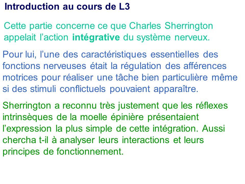 Cette partie concerne ce que Charles Sherrington appelait laction intégrative du système nerveux. Pour lui, lune des caractéristiques essentielles des
