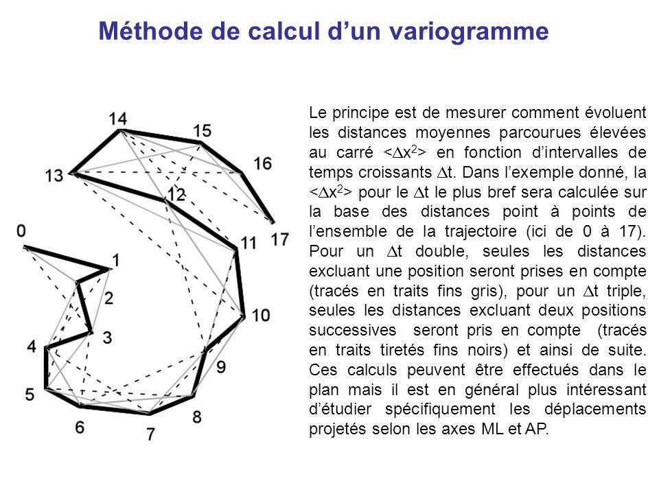Méthode de calcul dun variogramme Le principe est de mesurer comment évoluent les distances moyennes parcourues élevées au carré en fonction dinterval