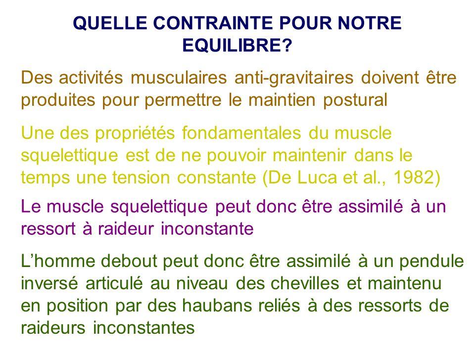 Des activités musculaires anti-gravitaires doivent être produites pour permettre le maintien postural Une des propriétés fondamentales du muscle squel