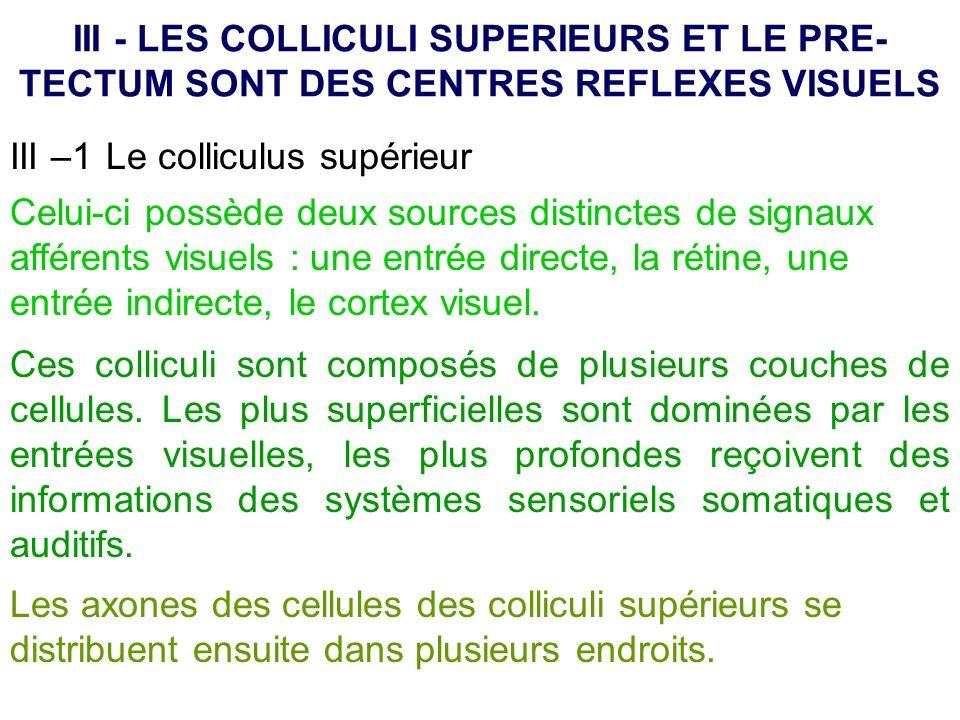 III - LES COLLICULI SUPERIEURS ET LE PRE- TECTUM SONT DES CENTRES REFLEXES VISUELS Celui-ci possède deux sources distinctes de signaux afférents visue