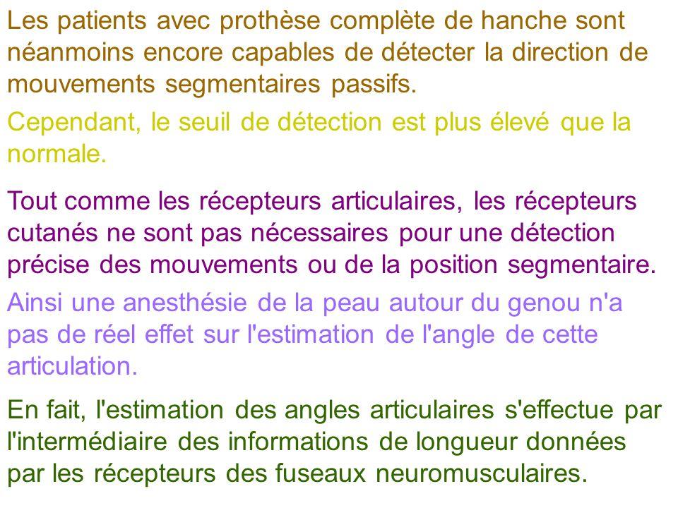 Les patients avec prothèse complète de hanche sont néanmoins encore capables de détecter la direction de mouvements segmentaires passifs. Cependant, l