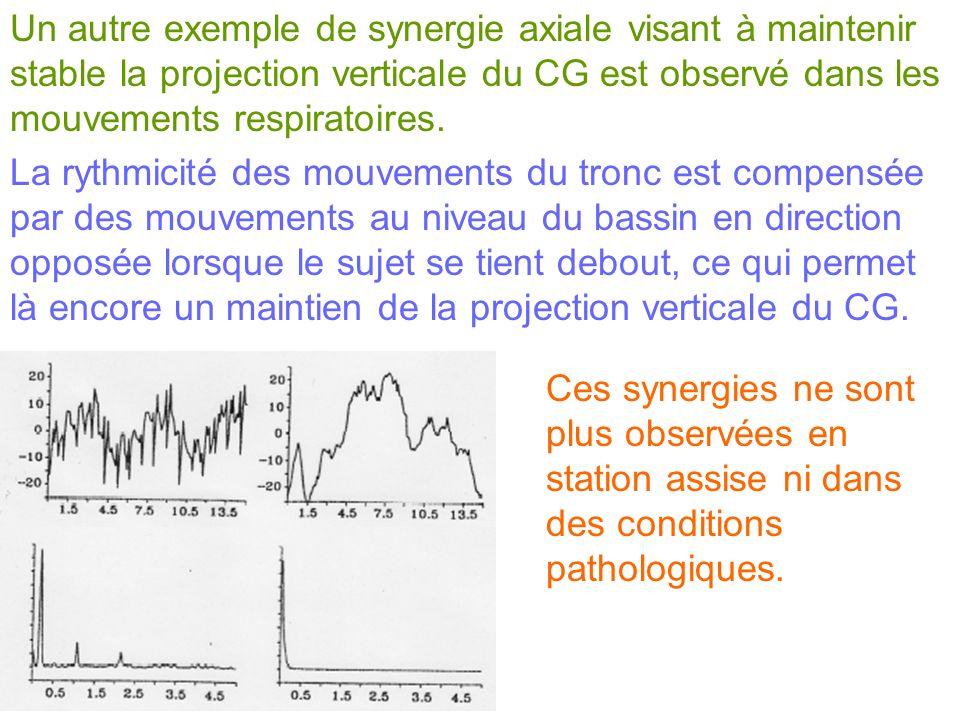 Un autre exemple de synergie axiale visant à maintenir stable la projection verticale du CG est observé dans les mouvements respiratoires. La rythmici