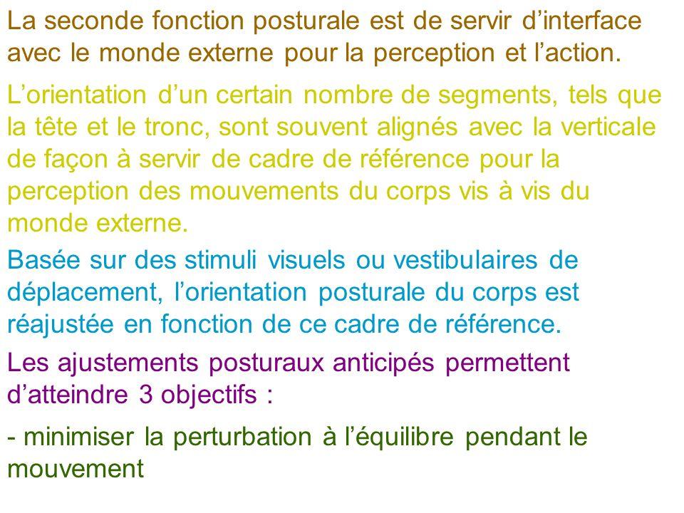 - minimiser la perturbation à lorientation posturale des segments servant de cadre de référence pour lorganisation du mouvement - assister la réalisation du mouvement en terme de vitesse ou de force.