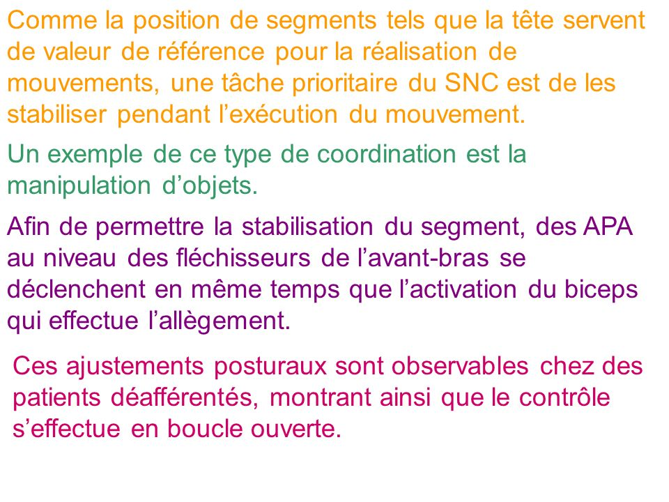 Comme la position de segments tels que la tête servent de valeur de référence pour la réalisation de mouvements, une tâche prioritaire du SNC est de l