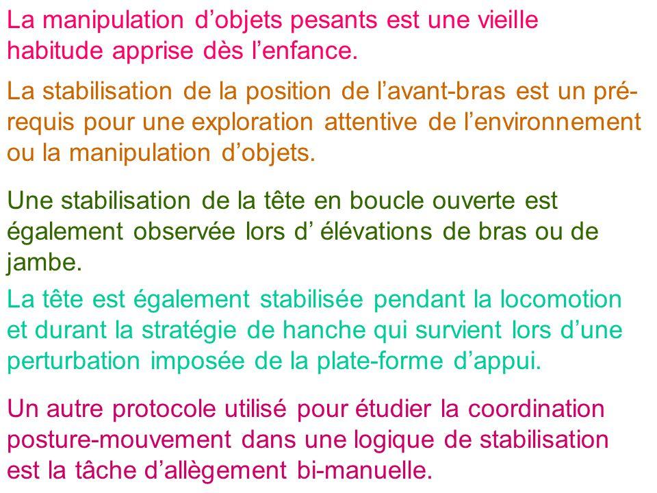 La stabilisation de la position de lavant-bras est un pré- requis pour une exploration attentive de lenvironnement ou la manipulation dobjets. Une sta