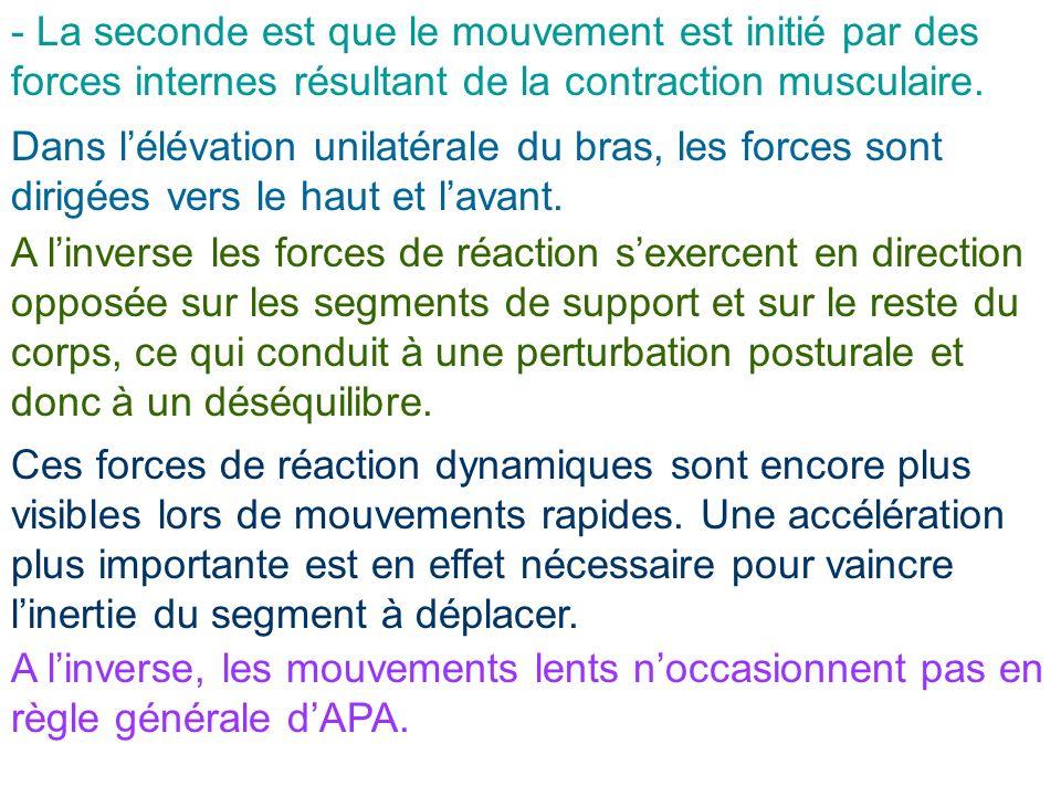 - La seconde est que le mouvement est initié par des forces internes résultant de la contraction musculaire. Dans lélévation unilatérale du bras, les