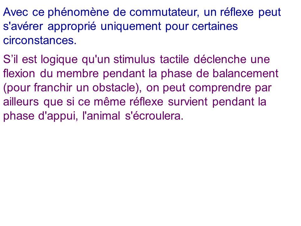 Avec ce phénomène de commutateur, un réflexe peut s'avérer approprié uniquement pour certaines circonstances. Sil est logique qu'un stimulus tactile d
