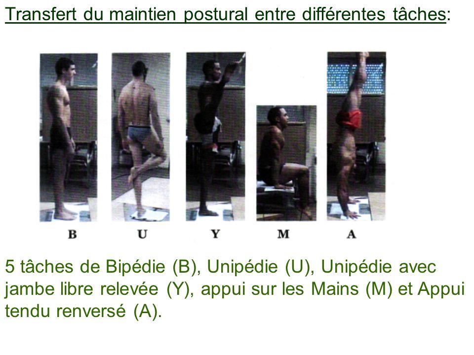 Transfert du maintien postural entre différentes tâches: 5 tâches de Bipédie (B), Unipédie (U), Unipédie avec jambe libre relevée (Y), appui sur les M