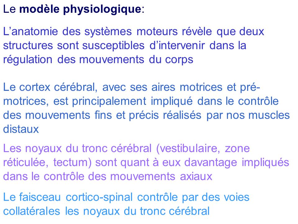 Lanatomie des systèmes moteurs révèle que deux structures sont susceptibles dintervenir dans la régulation des mouvements du corps Le cortex cérébral,