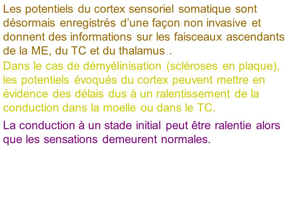 Les potentiels du cortex sensoriel somatique sont désormais enregistrés dune façon non invasive et donnent des informations sur les faisceaux ascendan