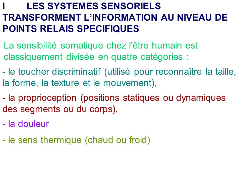 La sensibilité somatique chez lêtre humain est classiquement divisée en quatre catégories : - le toucher discriminatif (utilisé pour reconnaître la ta