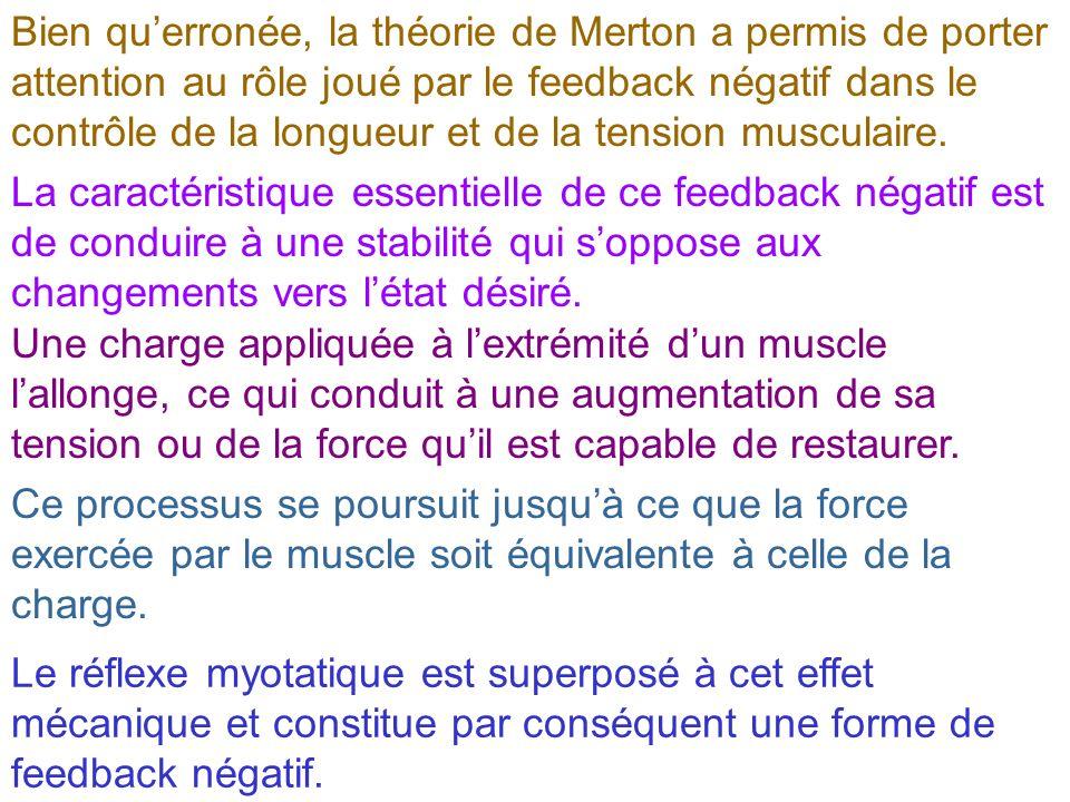 Bien querronée, la théorie de Merton a permis de porter attention au rôle joué par le feedback négatif dans le contrôle de la longueur et de la tensio