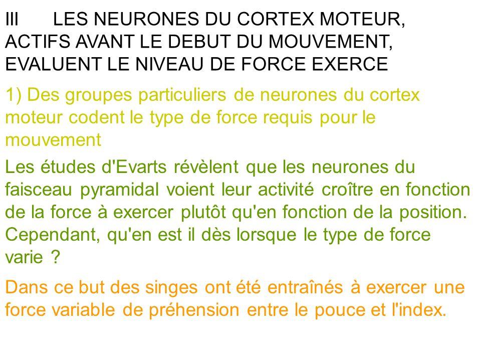 IIILES NEURONES DU CORTEX MOTEUR, ACTIFS AVANT LE DEBUT DU MOUVEMENT, EVALUENT LE NIVEAU DE FORCE EXERCE 1) Des groupes particuliers de neurones du co