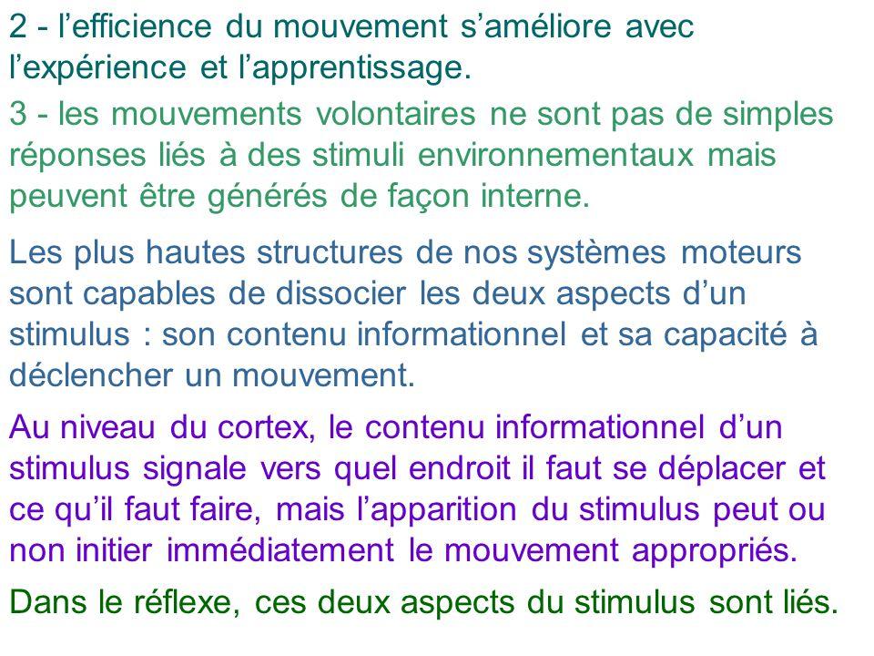 2 - lefficience du mouvement saméliore avec lexpérience et lapprentissage. 3 - les mouvements volontaires ne sont pas de simples réponses liés à des s