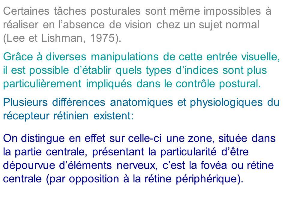 Certaines tâches posturales sont même impossibles à réaliser en labsence de vision chez un sujet normal (Lee et Lishman, 1975). Grâce à diverses manip