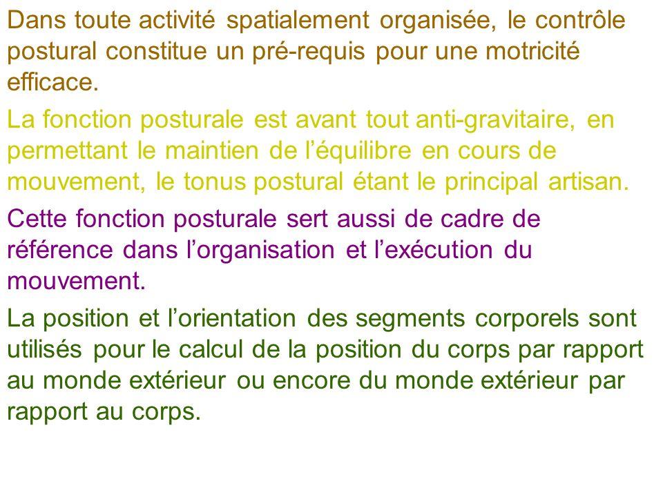 Daprès Bernard- Demanze et al., 2004)