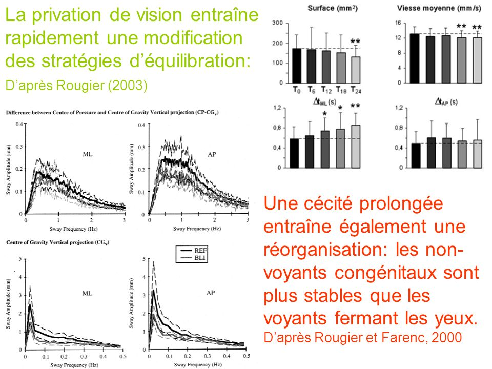 La privation de vision entraîne rapidement une modification des stratégies déquilibration: Daprès Rougier (2003) Une cécité prolongée entraîne égaleme