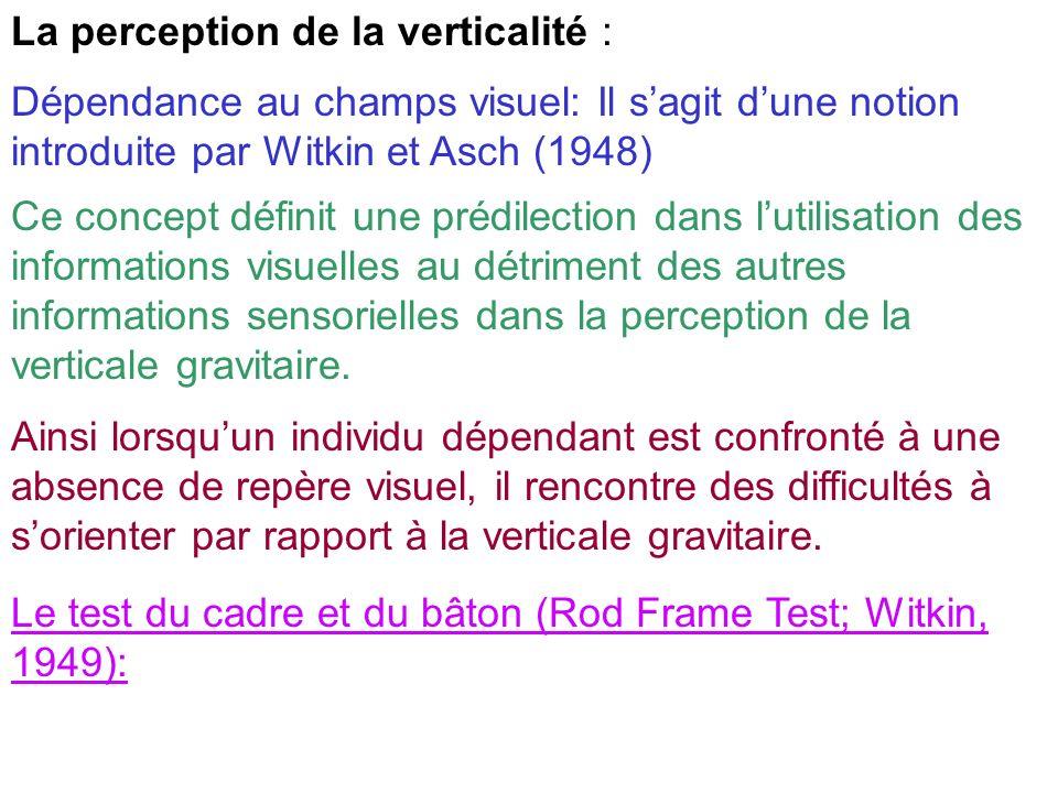 La perception de la verticalité : Dépendance au champs visuel: Il sagit dune notion introduite par Witkin et Asch (1948) Ce concept définit une prédil