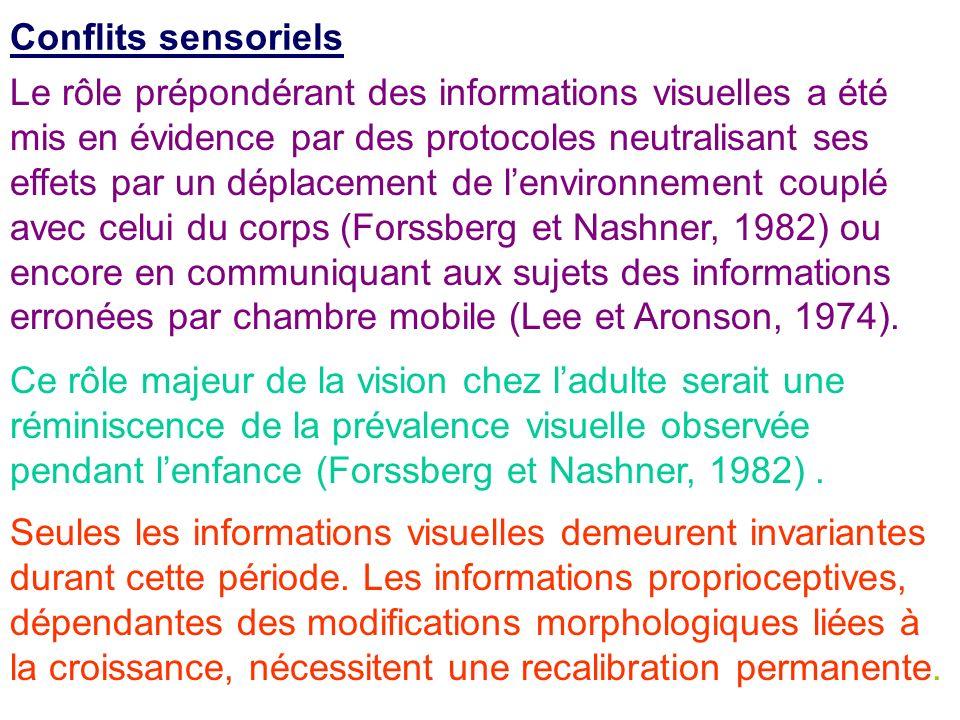 Conflits sensoriels Le rôle prépondérant des informations visuelles a été mis en évidence par des protocoles neutralisant ses effets par un déplacemen