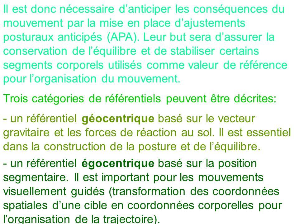 Il est donc nécessaire danticiper les conséquences du mouvement par la mise en place dajustements posturaux anticipés (APA). Leur but sera dassurer la