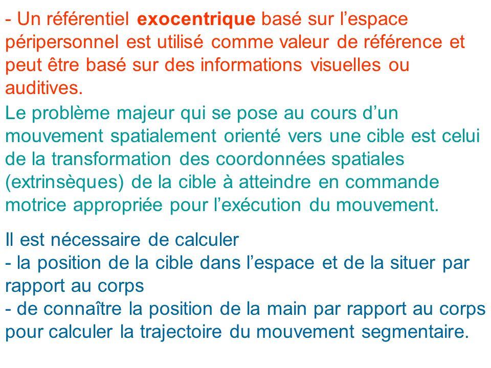 - Un référentiel exocentrique basé sur lespace péripersonnel est utilisé comme valeur de référence et peut être basé sur des informations visuelles ou