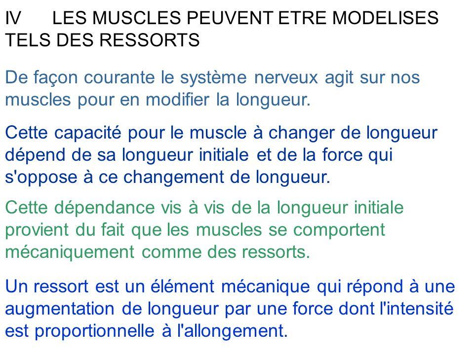 IV LES MUSCLES PEUVENT ETRE MODELISES TELS DES RESSORTS De façon courante le système nerveux agit sur nos muscles pour en modifier la longueur. Cette