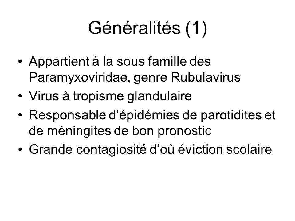 Généralités (1) Appartient à la sous famille des Paramyxoviridae, genre Rubulavirus Virus à tropisme glandulaire Responsable dépidémies de parotidites