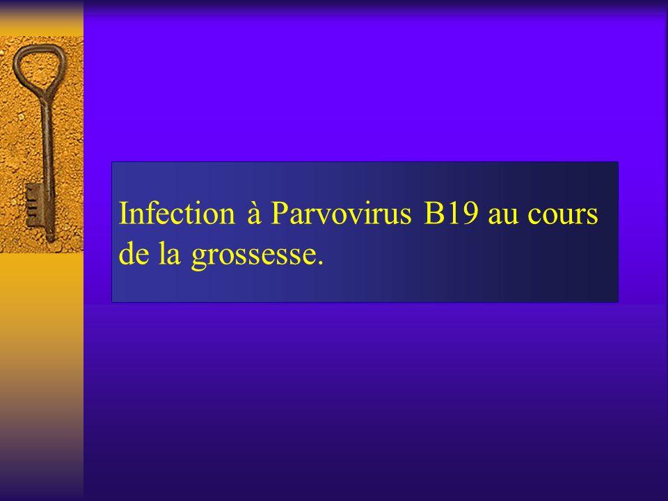 Infection à Parvovirus B19 au cours de la grossesse.