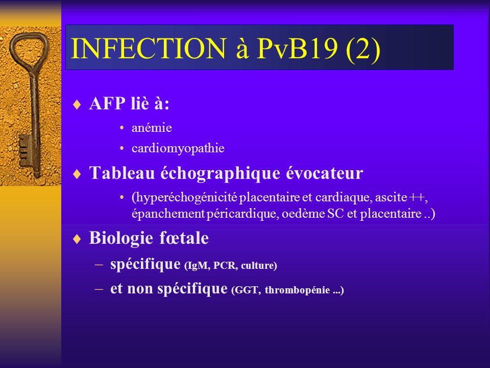 INFECTION à PvB19 (2) AFP liè à: anémie cardiomyopathie Tableau échographique évocateur (hyperéchogénicité placentaire et cardiaque, ascite ++, épanch