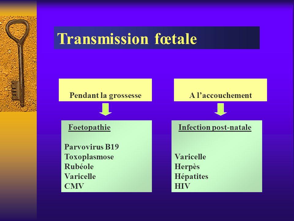 Foetopathie Parvovirus B19 Toxoplasmose Rubéole Varicelle CMV Pendant la grossesse A laccouchement Transmission fœtale Infection post-natale Varicelle