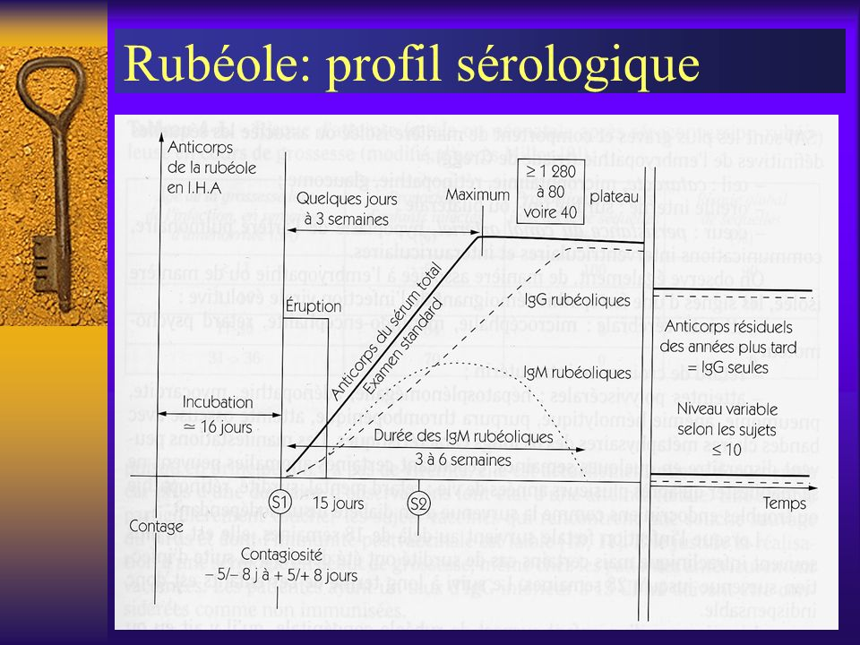 Rubéole: profil sérologique