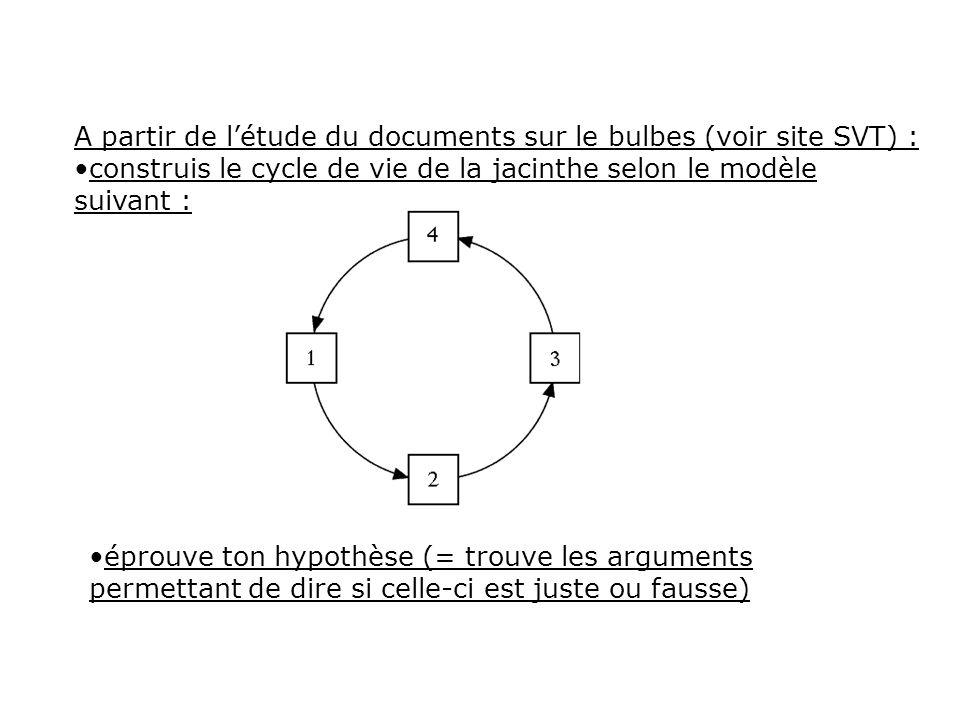 A partir de létude du documents sur le bulbes (voir site SVT) : construis le cycle de vie de la jacinthe selon le modèle suivant : éprouve ton hypothè