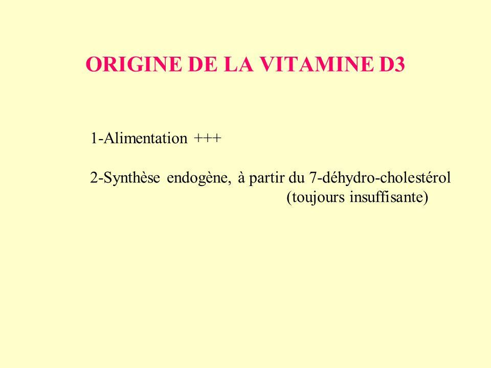 ORIGINE DE LA VITAMINE D3 1-Alimentation +++ 2-Synthèse endogène, à partir du 7-déhydro-cholestérol (toujours insuffisante)