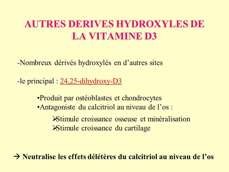 AUTRES DERIVES HYDROXYLES DE LA VITAMINE D3 -Nombreux dérivés hydroxylés en dautres sites -le principal : 24,25-dihydroxy-D3 Produit par ostéoblastes