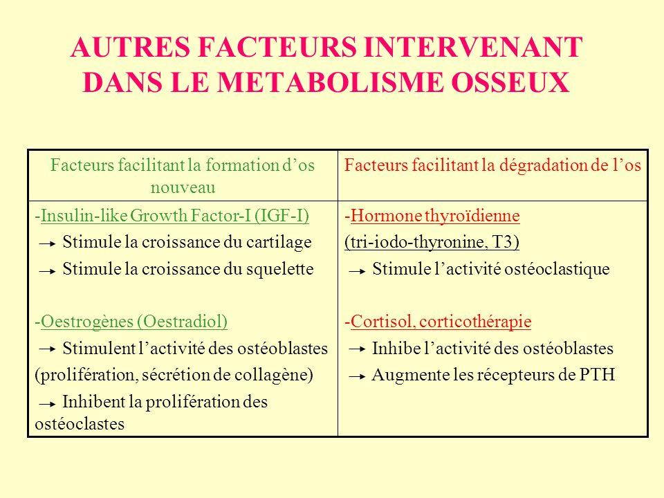 AUTRES FACTEURS INTERVENANT DANS LE METABOLISME OSSEUX -Hormone thyroïdienne (tri-iodo-thyronine, T3) Stimule lactivité ostéoclastique -Cortisol, cort
