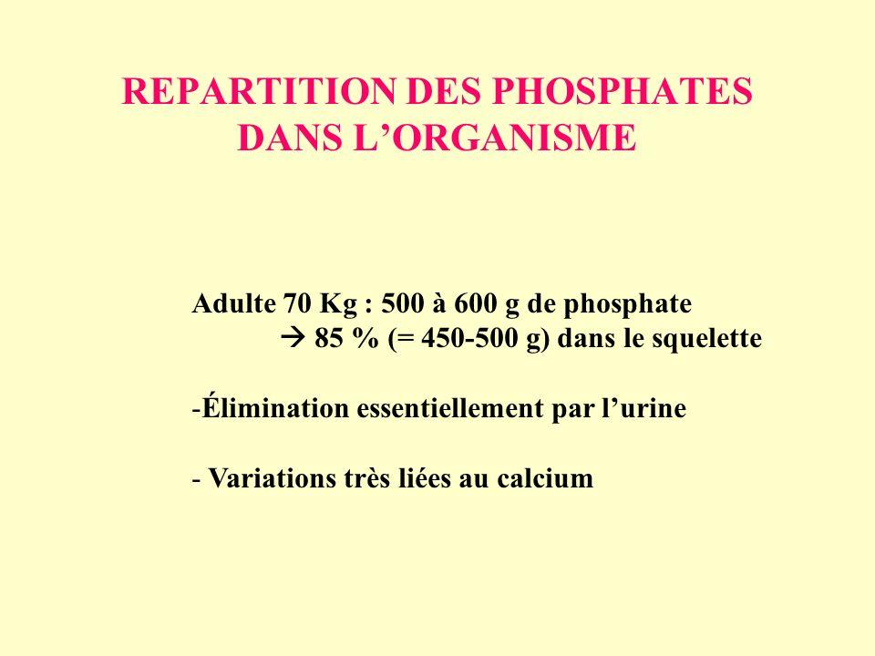 REPARTITION DES PHOSPHATES DANS LORGANISME Adulte 70 Kg : 500 à 600 g de phosphate 85 % (= 450-500 g) dans le squelette -Élimination essentiellement p