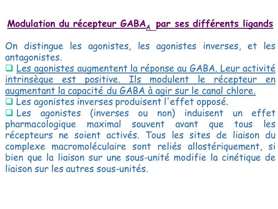 Modulation du récepteur GABA A par ses différents ligands On distingue les agonistes, les agonistes inverses, et les antagonistes. Les agonistes augme