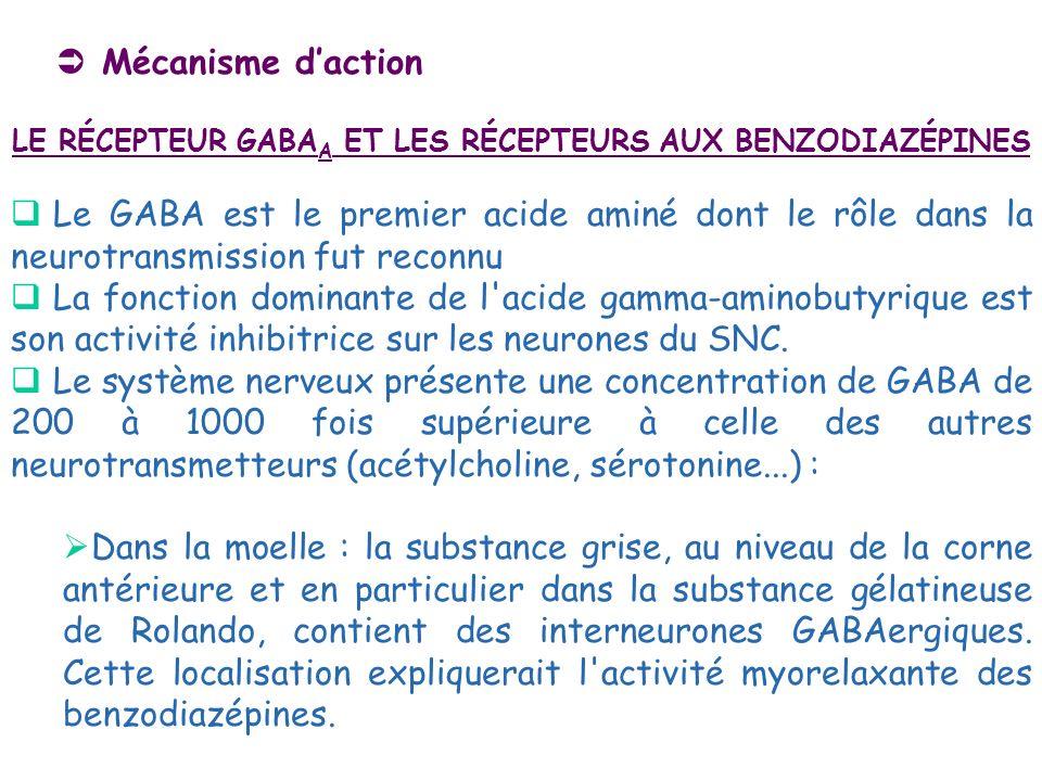 Mécanisme daction LE RÉCEPTEUR GABA A ET LES RÉCEPTEURS AUX BENZODIAZÉPINES Le GABA est le premier acide aminé dont le rôle dans la neurotransmission