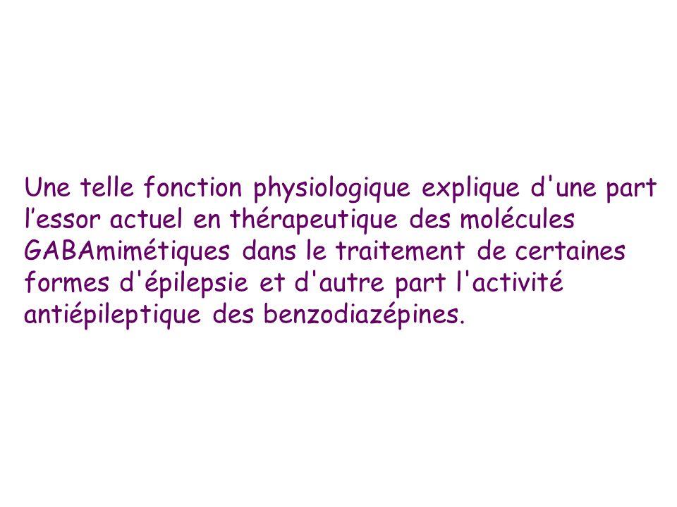 Une telle fonction physiologique explique d'une part lessor actuel en thérapeutique des molécules GABAmimétiques dans le traitement de certaines forme