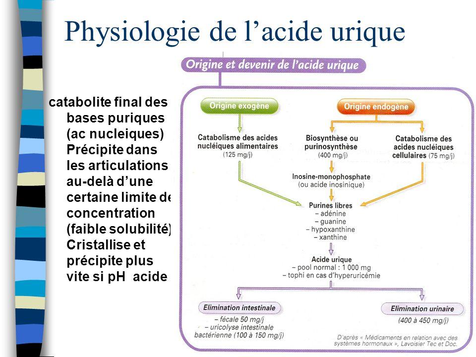 Physiologie de lacide urique catabolite final des bases puriques (ac nucleiques) Précipite dans les articulations au-delà dune certaine limite de conc