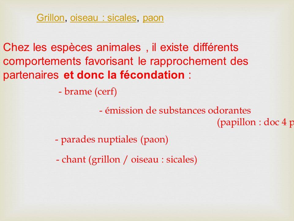 Chez les espèces animales, il existe différents comportements favorisant le rapprochement des partenaires et donc la fécondation : - brame (cerf) - ch