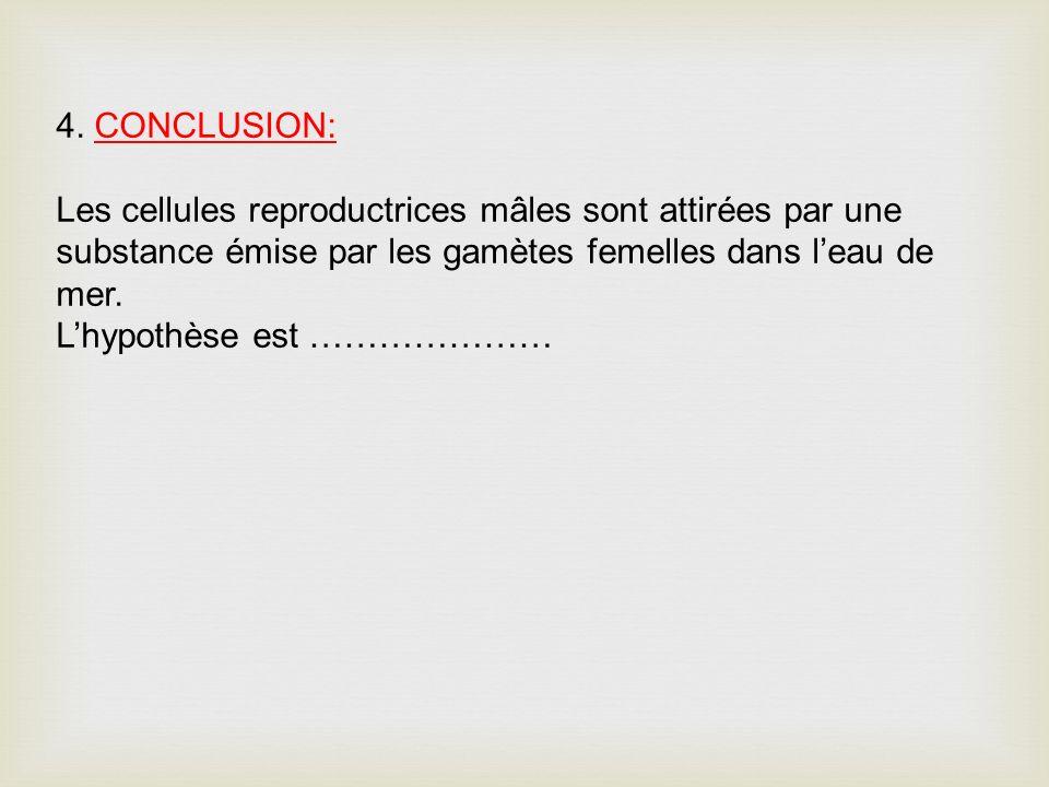 4. CONCLUSION: Les cellules reproductrices mâles sont attirées par une substance émise par les gamètes femelles dans leau de mer. Lhypothèse est ……………