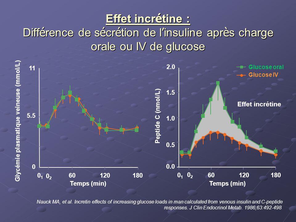 Effet incr é tine : Diff é rence de s é cr é tion de l insuline apr è s charge orale ou IV de glucose Nauck MA, et al. Incretin effects of increasing