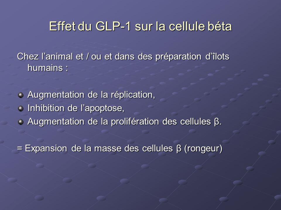 Effet du GLP-1 sur la cellule béta Chez lanimal et / ou et dans des préparation dîlots humains : Augmentation de la réplication, Inhibition de lapopto