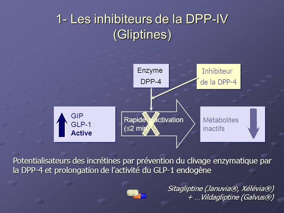 GIP GLP-1 Active GIP GLP-1 Active Métabolites inactifs Métabolites inactifs Rapide inactivation (2 min) Enzyme DPP-4 Enzyme DPP-4 Inhibiteur de la DPP