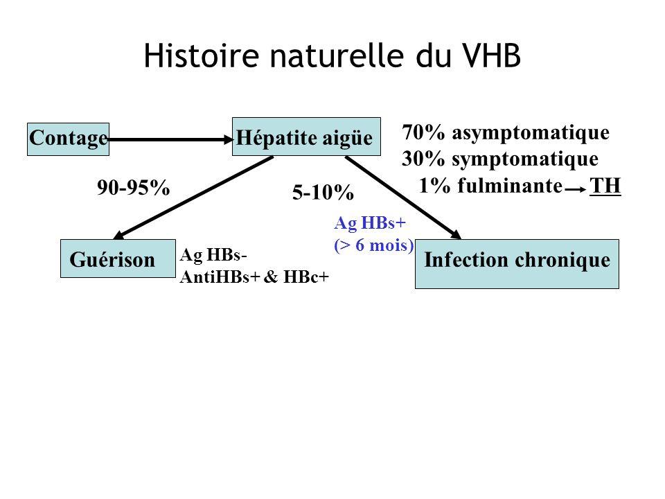 Contage 70% asymptomatique 30% symptomatique 1% fulminante TH Guérison 90-95% Infection chronique 5-10% Hépatite aigüe Ag HBs- AntiHBs+ & HBc+ Ag HBs+
